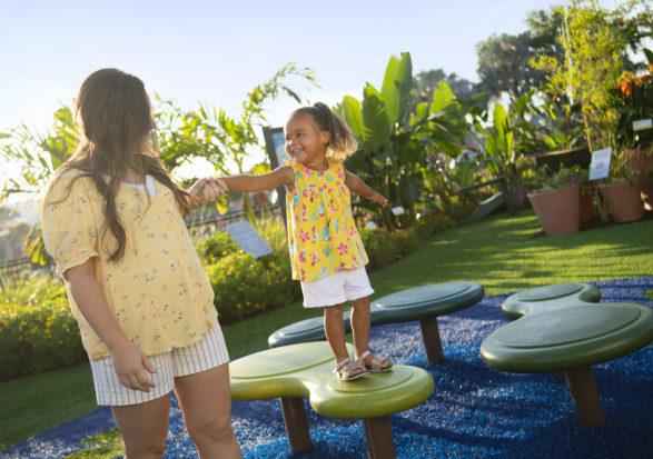 Disney passholders special offer